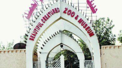 حديقة حيوان جدة
