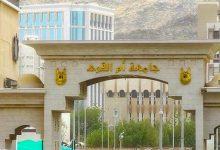 تخصصات جامعة أم القرى
