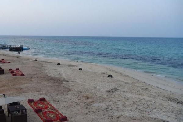 أسعار الجلسات في جزيرة أحبار